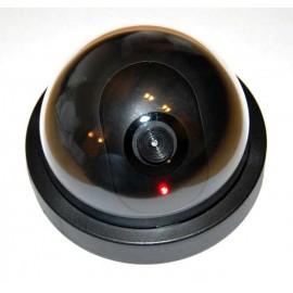 Муляж MS006DR внутренней камеры фото - купить